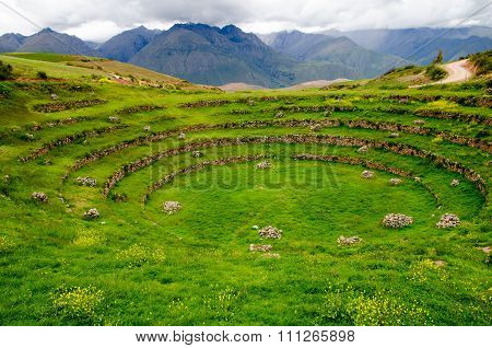 Agricultural Inca Terraces At Moray, Peru