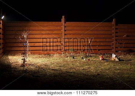 Planting At Night In Spotlight In The Fall