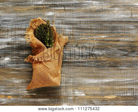 asparagus in a canvas bag with on wooden table, selective focus