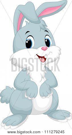 Cute rabbit cartoon