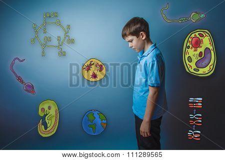 Teen boy lowered his head frowned looking down icons biology edu