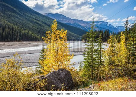 Autumn decrease in river water. Rocky Mountains. The picturesque valley in Jasper National Park