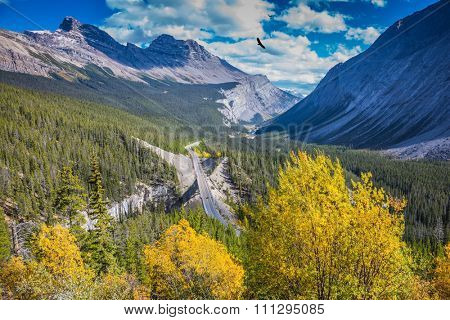 Scenic magnificent canyon on a sunny day. Canyoning excellent highway passes.  Banff National Park, Canadian Rockies