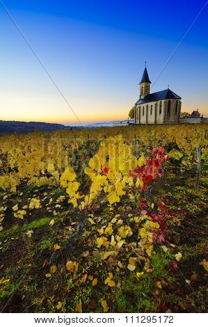 Church And Vineyards Of Saint Laurent D'oingt During Sunrise, Beaujolais, France