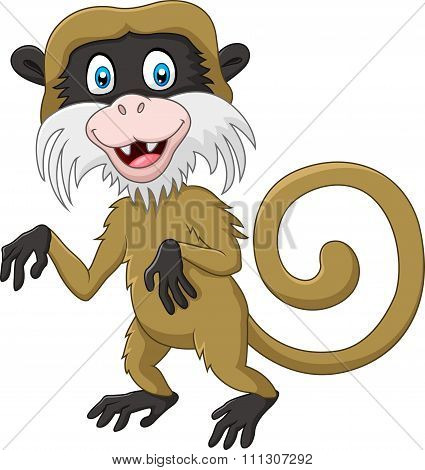 Cartoon funny tamarin monkey isolated on white background