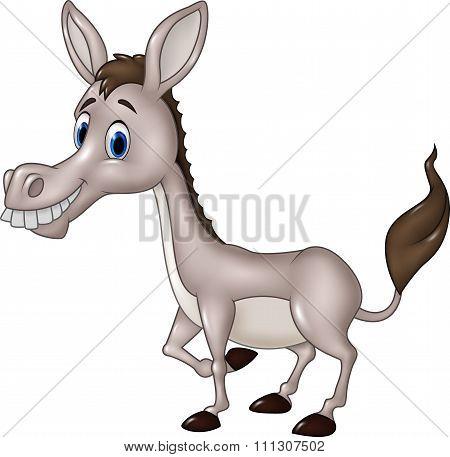 Cartoon funny donkey isolated on white background