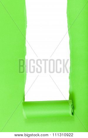 Green Rolled-up Torn Paper On Vertical Background
