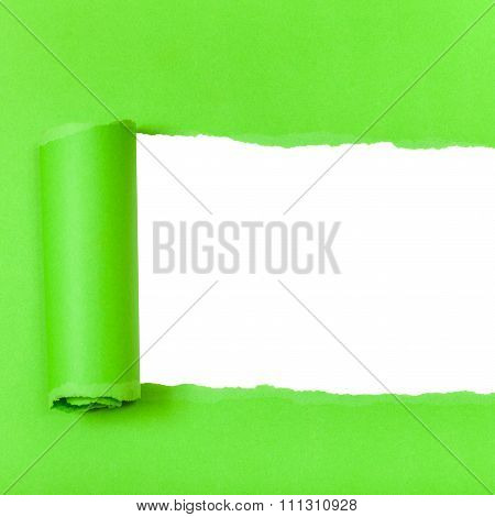 Green Rolled-up Torn Paper On Square Background