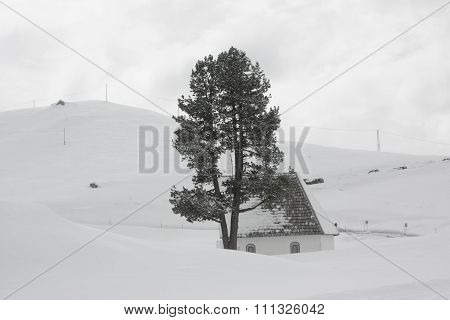 Snow-capped mountains, house and tree.