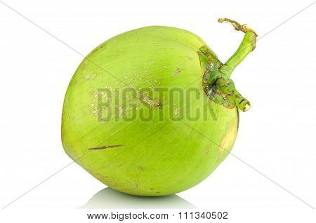 Coconut On Isolated