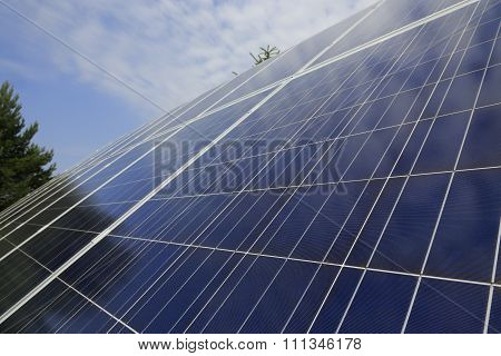 Photovoltaic Modules In Front