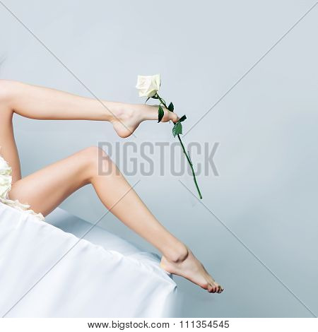 Female Legs With Rose