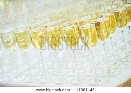 catering services. rows of glasses with sparkling wine at restaurant party or celebration