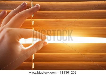Looking through window blinds, sun light coming inside. Conceptual