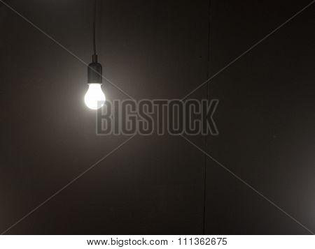 Single Light Bulb