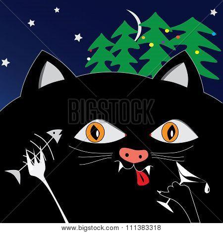Fun Black Cat