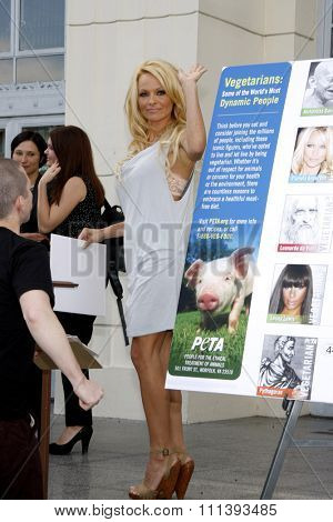 Pamela Anderson at the PETA Goes Postal: Bob Barker, Pamela Anderson And Steve-O Unveil Vegetarian Icons Postage Sheet held at the Hollywood Post Office in Hollywood, USA on November 29, 2010.