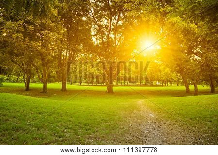 Nature Landscape And Sunset