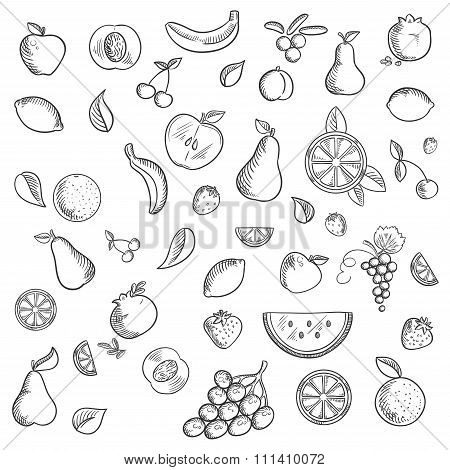Fruits and berries sketched icons set