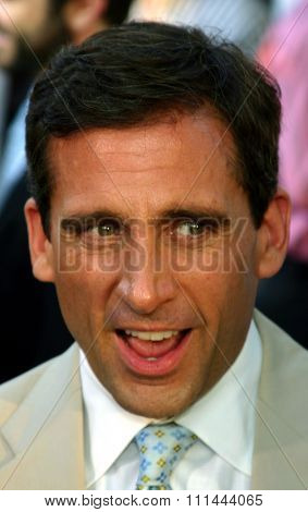 Hollywood - August 11, 2005. Steve Carell at the