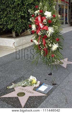 4 October 2004 - Hollywood, California - Flowers at the Hollywood's Walk of Fame star of the respected film actress Janet Leigh.