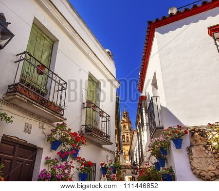 Flower Street Torre Del Aliminar Tower Mezquita Cordoba Spain