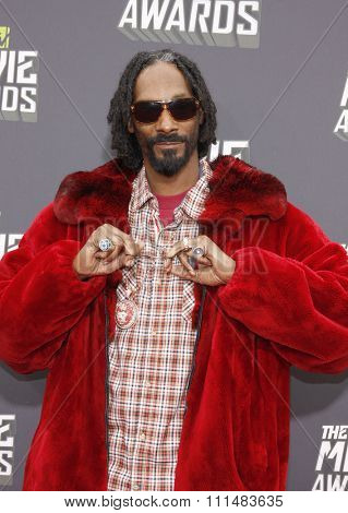 Snoop Dogg at the 2013 MTV Movie Awards at the Sony Pictures Studios on April 14, 2013 in Los Angeles, California.