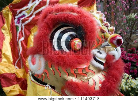 Close-up of chinese lion head