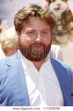 Zach Galifianakis at the World premiere of 'G-Force' held at the El Capitan Theater in Hollywood, USA on July 19, 2009.