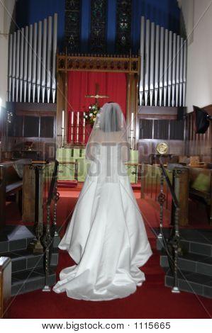 Bride Contemplation