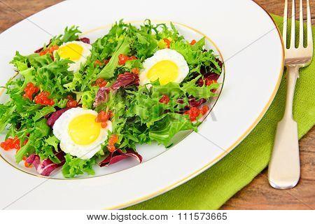 Salad Mix Batavian, Frise, Radicchio, Chicory, Dietary Mel end E