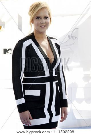 Amy Schumer at the 2015 MTV Movie Awards held at the Nokia Theatre L.A. Live in Los Angeles, USA on April 12, 2015.