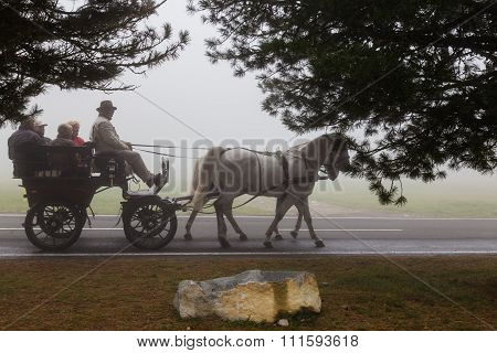 People In The Wagon Pulled By A Horse