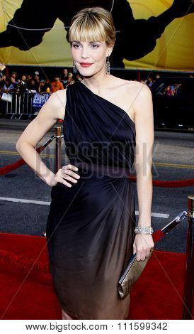 Leslie Bibb arrives to the Grauman's Chinese Theater in Hollywood, California, United States on April 30, 2008.