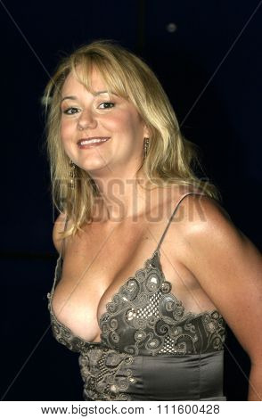 Megyn Price at The WB Network's 2004 All Star Party- Red Carpet & Party at The Lounge At Astra West in Los Angeles, USA on July 14, 2004.