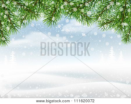 Winter Background With Pine Branches