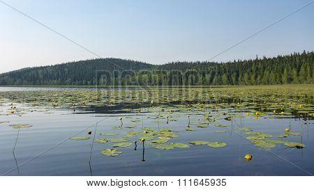 Alaska's Lost Lake