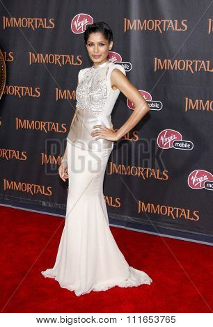 LOS ANGELES, CALIFORNIA - November 7, 2011. Freida Pinto at the World premiere of