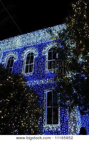 Exhibición de Navidad de Osborne en Walt Disney World