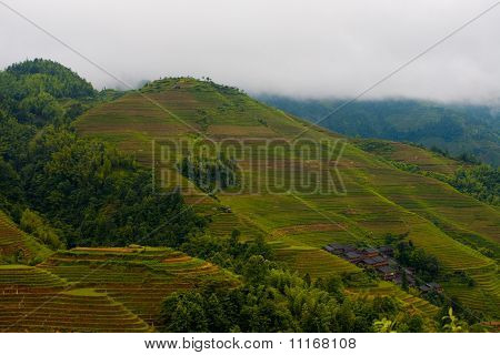 Rainy Steep Rice Terrace Mountain Titian Longji