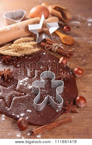 ginger bread cookie and mold