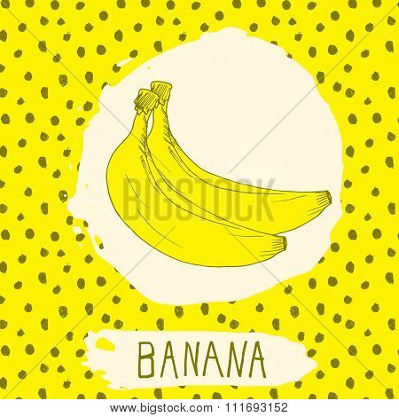 Banana Hand Drawn Sketched Fruit With Leaf On Background With Dots Pattern. Doodle Vector Banana For