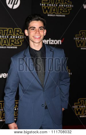 LOS ANGELES - DEC 14:  Cameron Boyce at the Star Wars: The Force Awakens World Premiere at the Hollywood & Highland on December 14, 2015 in Los Angeles, CA