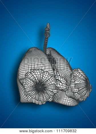 Concept conceptual anatomical human woman 3D wireframe mesh respiratory system with lungs and breasts on blue background for anatomy, medical, body, medicine, biology, internal, health chest pulmonary