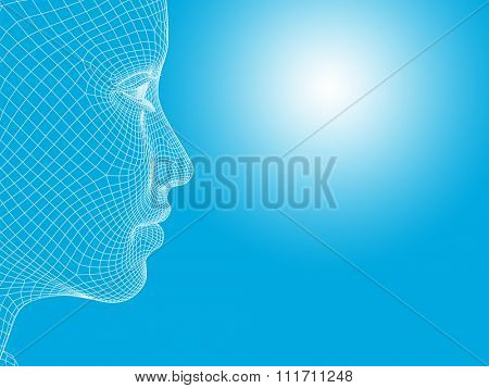 Concept 3D wireframe young human female or woman face or head on white blue background metaphor for technology, cyborg, digital, virtual, avatar, model, science, fiction, future, mesh or abstract