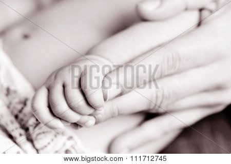 closeup of the hand of a caucasian baby gripping the hand of an adult, in black and white