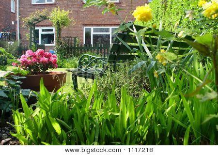 English Country Garden I