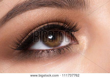 Closeup image of beautiful woman eye with fashion makeup