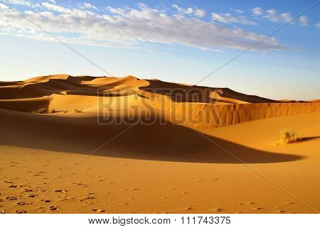 Morocco. Light and shadow Erg Chebbi dunes