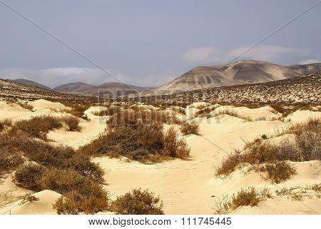 Roads Fuerteventura